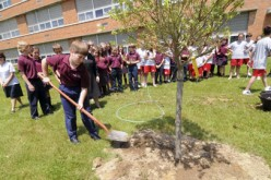 Trees planted at schools in memory of teacher, soldier