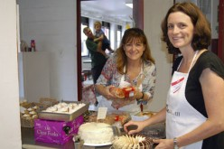 Family festival at CKS in Haddonfield