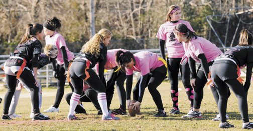 powderpuff-web