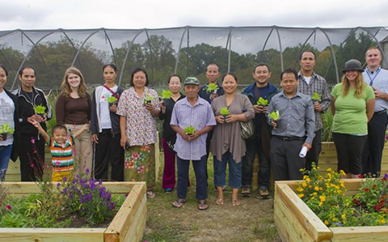 Refugee gardeners harvest familiar produce