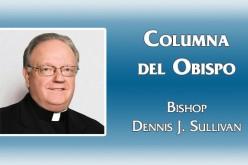 Columna del Obispo – Jornada Mundial de la Juventud 2016