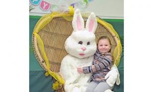 Bunny2-WEB