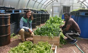 Dean Buttacavoli, left, Urban Farmer and Educator for the Center for Environmental Transformation in Camden, works in the organization's greenhouse with 17-year-old Senior Farmer, Dimitrius Eliza. Photo by Joanna Gardner