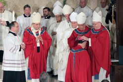 Ordination and Installation