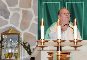 Father John Hurley, CSP, commissioned by Pope Francis to be a Missionary of Mercy for this Holy Year, speaks at Saint Charles Borromeo Parish, Sicklerville, on June 9. Photo by Alan M. Dumoff