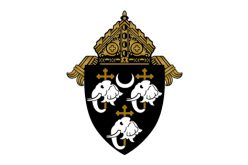 Diocese announces reorganization of Camden parishes