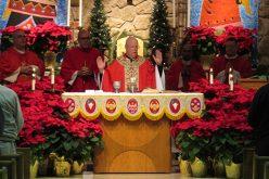 VITALity celebrates Stephen Ministry