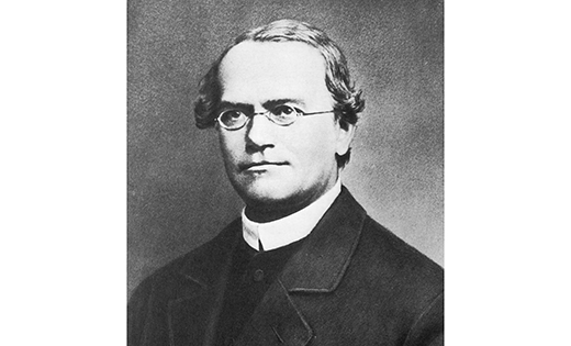 greger mendel s bio paper Gregor mendel essaysgregory topics in paper an the monastery sent him to study at the university of vienna to train to be a teacher in mathematics and biology.