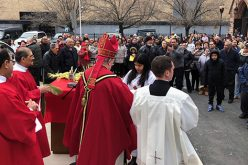 Palm Sunday at the Cathedral of the Immaculate Conception