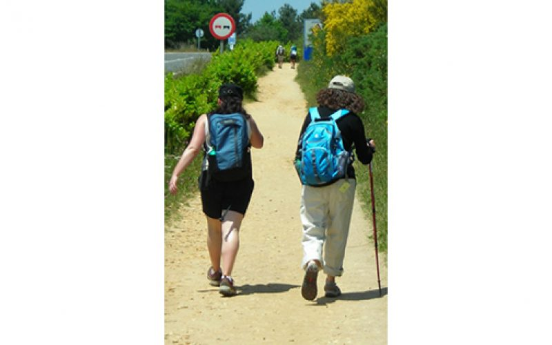 VITALity begins a new tradition: 'Pilgrimage On The Road of Life: The Way of Saint James'