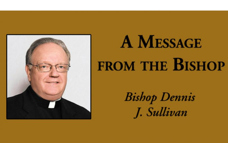 A Message from the Bishop – The pope's Letter to the People of God